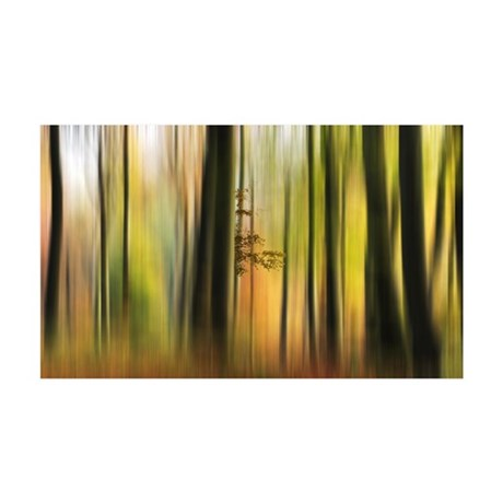 Colours of Autumn Forest 35x21 Wall Decal