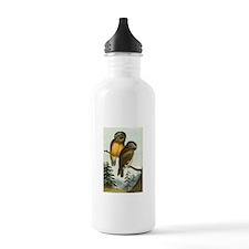 John Cassin California Owl Water Bottle