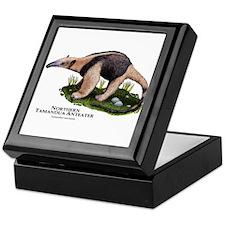 Northern Tamandua Anteater Keepsake Box