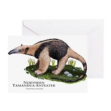 Northern Tamandua Anteater Greeting Card