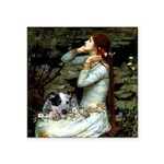 Ophelia - Aussie Cattle Pup Square Sticker 3