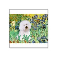 "Irises and Bichon Square Sticker 3"" x 3"""