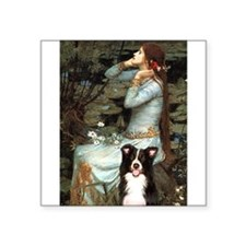 "Ophelia & Border Collie Square Sticker 3"" x 3"""