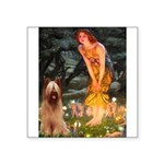 Fairies / Briard Square Sticker 3
