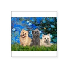 "Lilies3/3 Cairn Terriers Square Sticker 3"" x 3"""