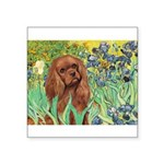 Irises & Ruby Cavalier Square Sticker 3