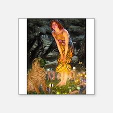 """Fairies / Shar Pei Square Sticker 3"""" x 3"""""""