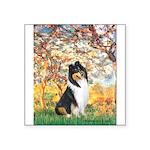 Spring / Collie Square Sticker 3