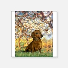 "Spring / Dachshund Square Sticker 3"" x 3"""
