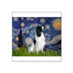 Starry / Eng Springer Square Sticker 3