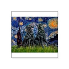 """Starry / Two Flat Coated Ret Square Sticker 3"""" x 3"""