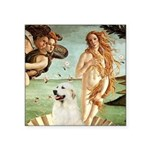 Venus / Great Pyrenees Square Sticker 3