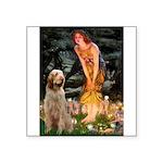 Fairies/ Italian Spinone Square Sticker 3