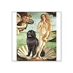 Venus & Newfoundland Square Sticker 3