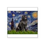 Starry / Newfound Square Sticker 3
