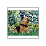 Bridge / Norwich Terrier Square Sticker 3
