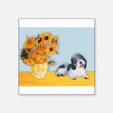"Sunflowers/PBGV Square Sticker 3"" x 3"""