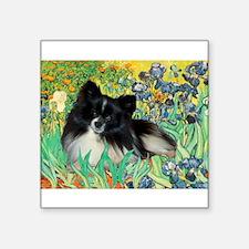 "Irises / Pomeranian(bb) Square Sticker 3"" x 3"""