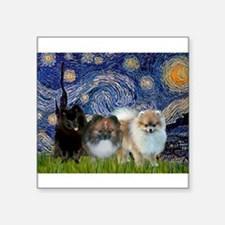 "Starry/3 Pomeranians Square Sticker 3"" x 3"""