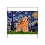 Starry / Poodle (Apricot) Square Sticker 3