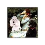 Ophelia / Poodle pair Square Sticker 3