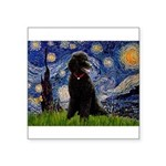 Starry / Std Poodle(bl) Square Sticker 3