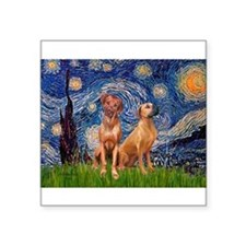 "Starry / Rhodesian Ridgeback Square Sticker 3"" x 3"