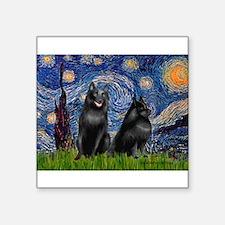 "Starry / Schipperke Pair Square Sticker 3"" x 3"""