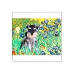 Irises / Miniature Schnauzer Square Sticker 3