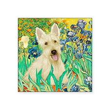"Irises / Scottie (w) Square Sticker 3"" x 3"""