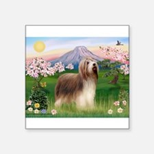 "Fuji Blossoms / Bearded Collie Square Sticker 3"" x"