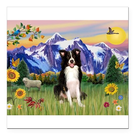 "Mt Country & Border Collie Square Car Magnet 3"" x"