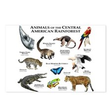 Central American Rainforest Postcards (Package of