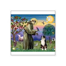 S, Fr, #2/ Australian Shep 2 Square Sticker 3&quot