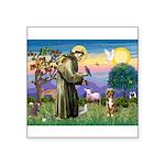 St Francis/Aussie (#5) Square Sticker 3