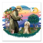 St.Francis #2/ Bearded Colli Square Car Magnet 3&q
