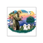 St Francis #2/ Bichon (2) Square Sticker 3