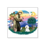 St Francis #2/ Bichon #1 Square Sticker 3
