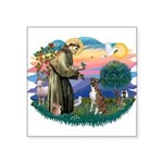 St.Francis #2/ Boxer (nat ea Square Sticker 3&quot