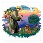 St Francis #2/ Brussels G Square Car Magnet 3
