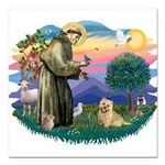 St Francis #2/ Cairn Ter Square Car Magnet 3