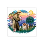 St Francis #2/ Chow (B) Square Sticker 3