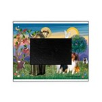 St Francis / Collie Pair Picture Frame