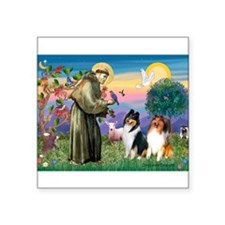 "St Francis / Collie Pair Square Sticker 3"" x 3"""