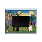 St. Francis & Collie Picture Frame