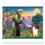 St. Francis & Collie Square Car Magnet 3