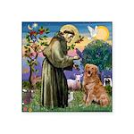 Saint Francis' Golden Square Sticker 3
