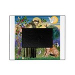 St Francis & Golden Picture Frame