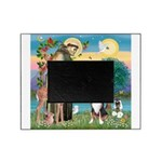 S, Fr, #2/ Greater Swiss MD Picture Frame