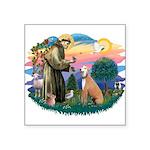 "St.Francis #2/ Greyhound Square Sticker 3"" x"